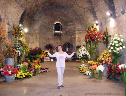 выставка цветов, Сплит, Дворец Диоклетиана