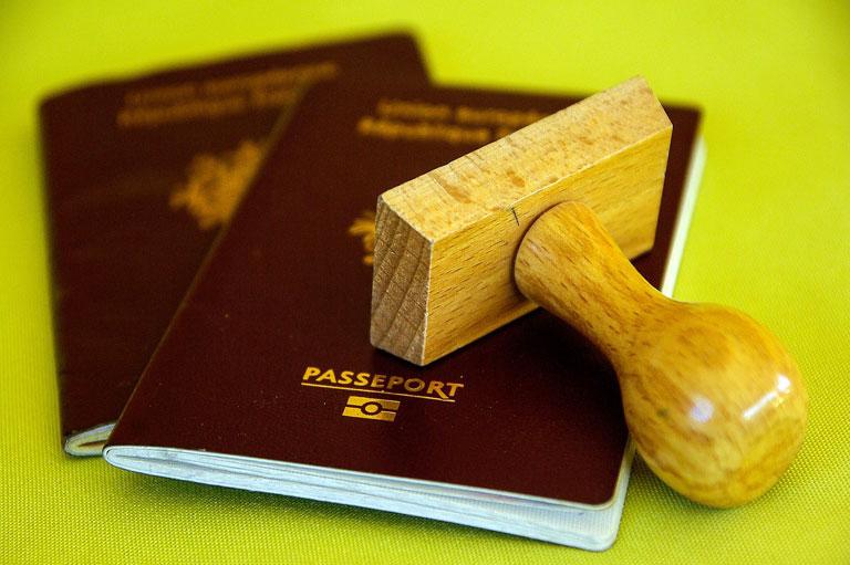 паспорт, контроль