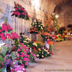 Выставка, цветов, Хорватия, Дворец, Диоклетиана
